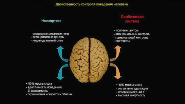 Слайд 12. Двойственность контроля поведения человека
